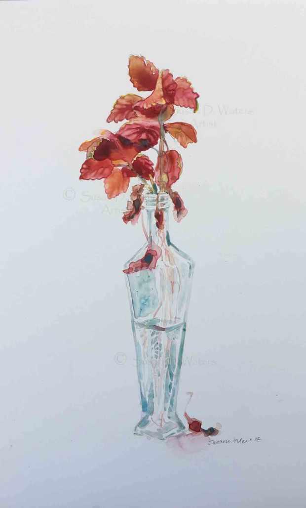 Coleus-Cutting,-Susan-Duke-Waters
