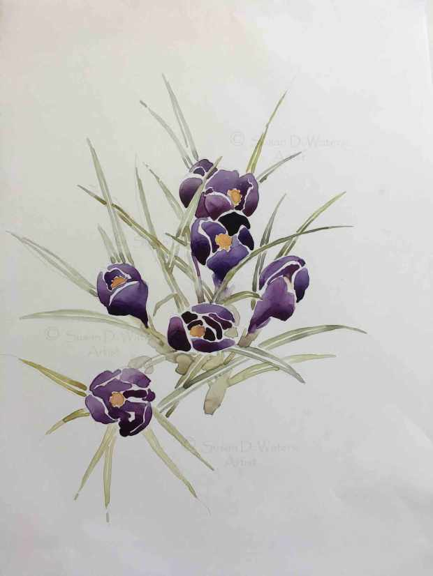 Crocus-in-Snow-II,-Susan-Duke-Waters