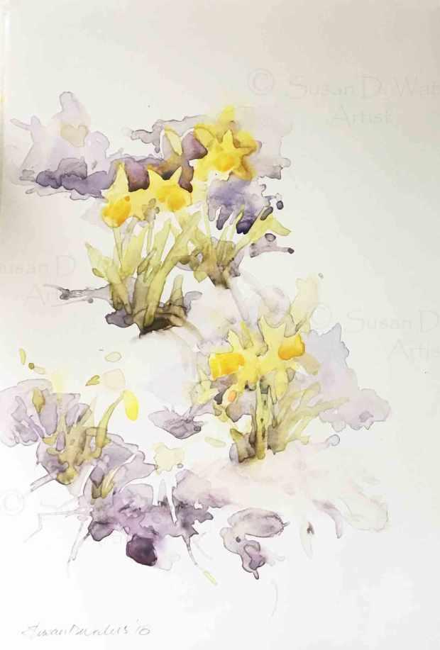 Daffodils-in-Snow-I,-Susan-Duke-Waters