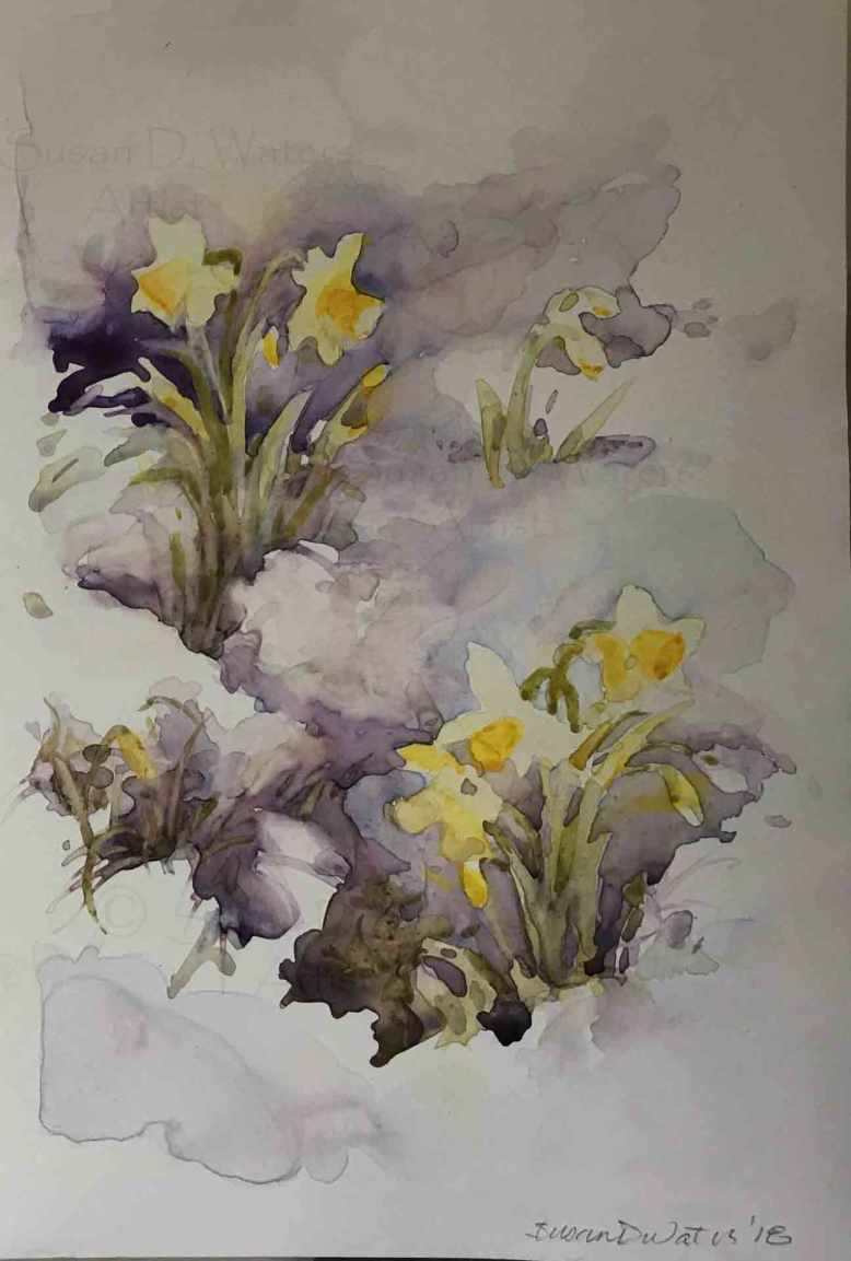 Daffodils-in-Snow-II,-Susan-Duke-Waters