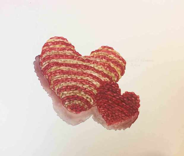 Knitted-Hearts,-Susan-Duke-Waters