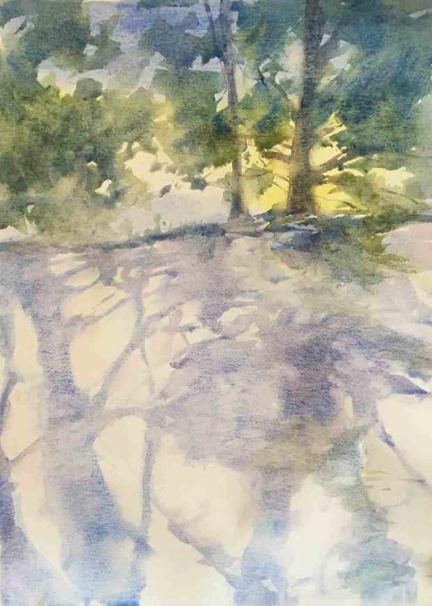Sun-Lit-Trees,-Susan-Duke-Waters