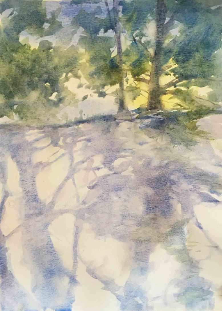 Sun-Lit-Trees,-Susan-Duke-Waters