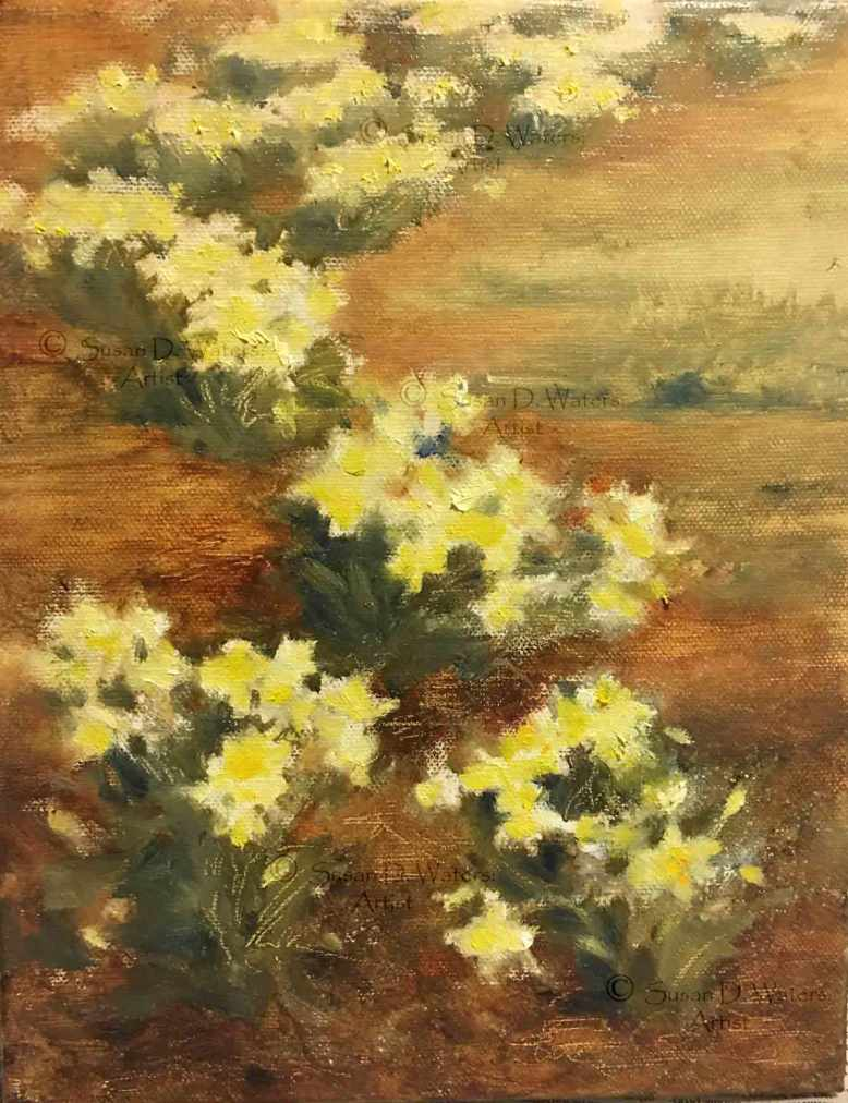 Daffodils-and-Pinestraw,-Susan-Duke-Waters