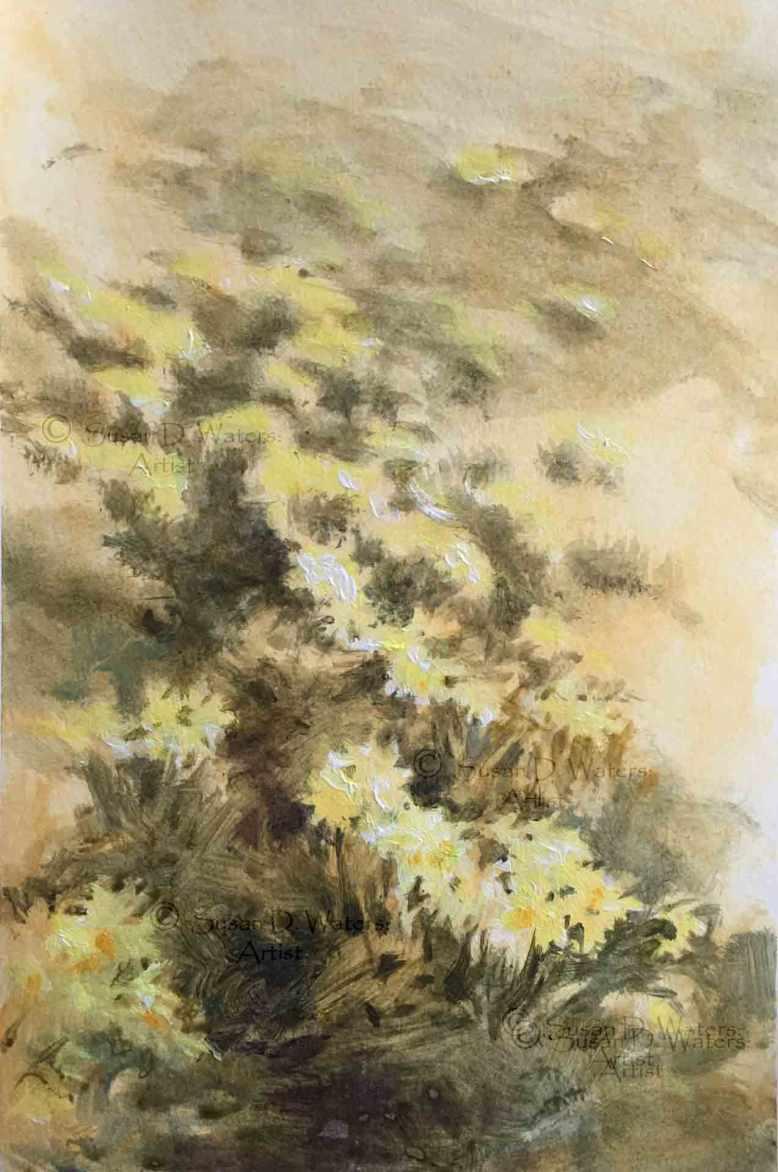 Dafodil-Field-I,-Susan-Duke-Waters