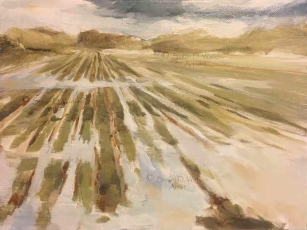 Flooded-Field-I,-Susan-Duke-Waters