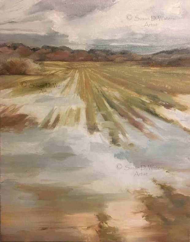 Flooded-Field-II,-Susan-Duke-Waters