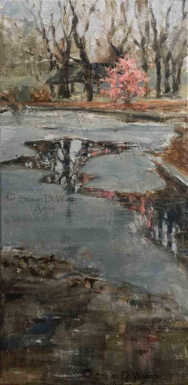 Seaborn-Jones-Park-in-Puddles,-Susan-Duke-Waters