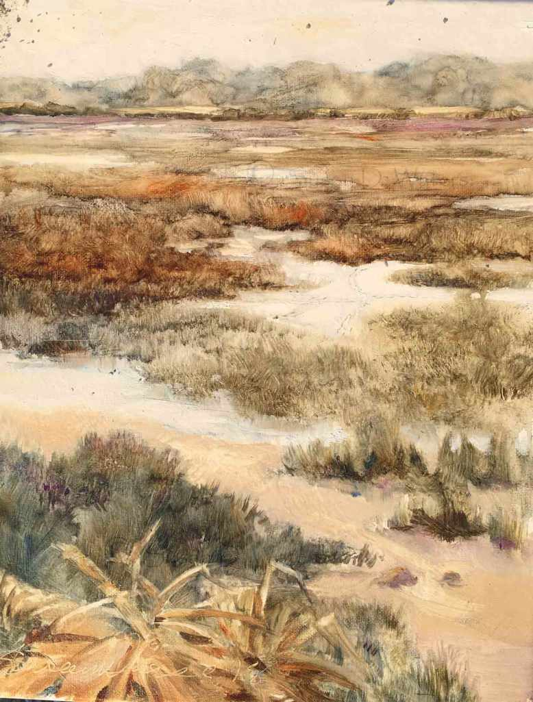 Edisto-Salt-Marsh,-Susan-Duke-Waters
