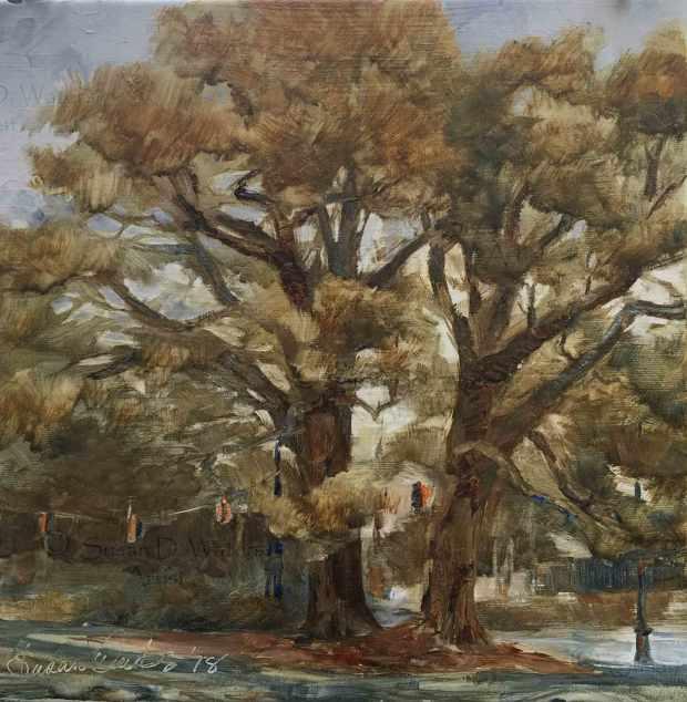 Linear-Park-Oaks,-Susan-Duke-Waters