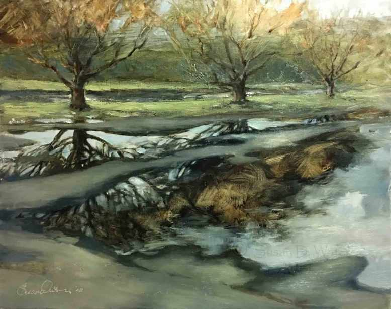Parking-Lot-Puddles,-Susan-Duke-Waters