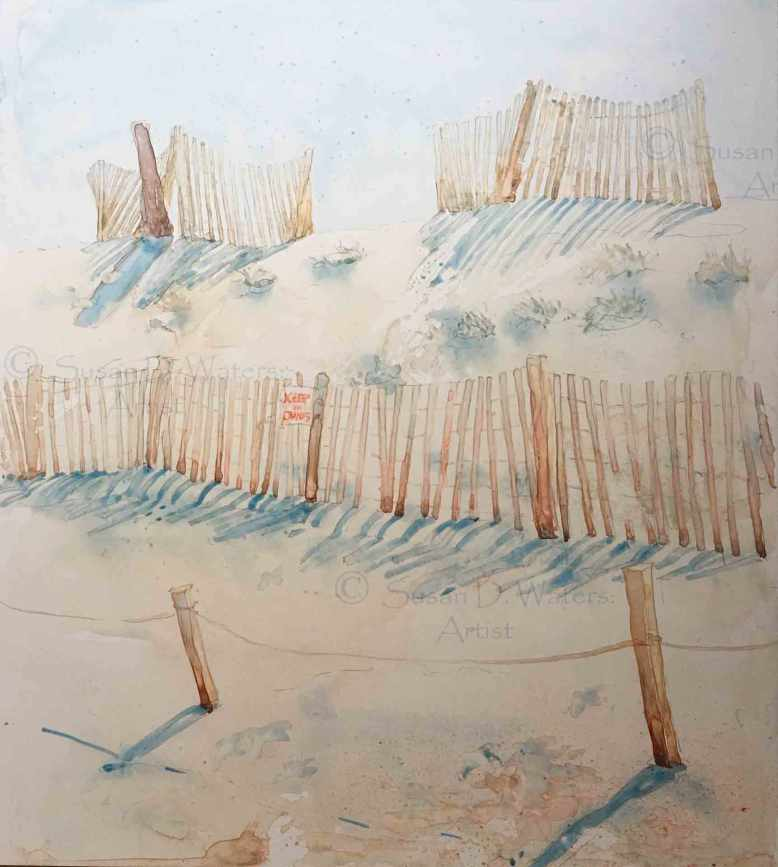 Preserving-the-Dunes,-Susan-Duke-Waters