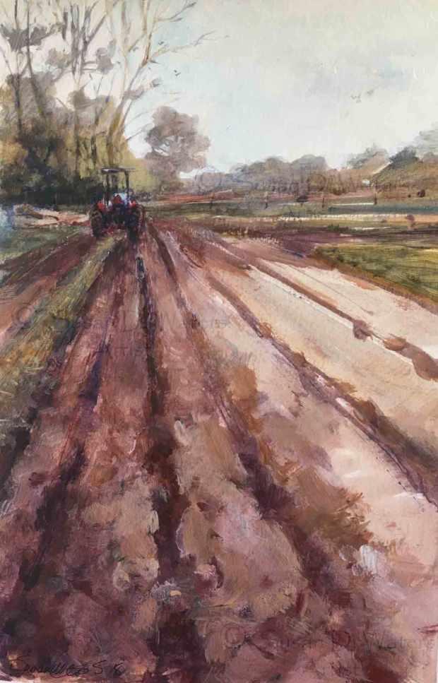Spring-Plowing,-Susan-Duke-Waters