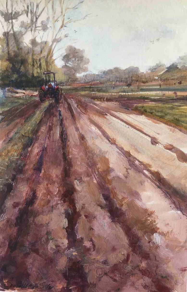 Spring-Plowing,-Susan-Duke-Waters