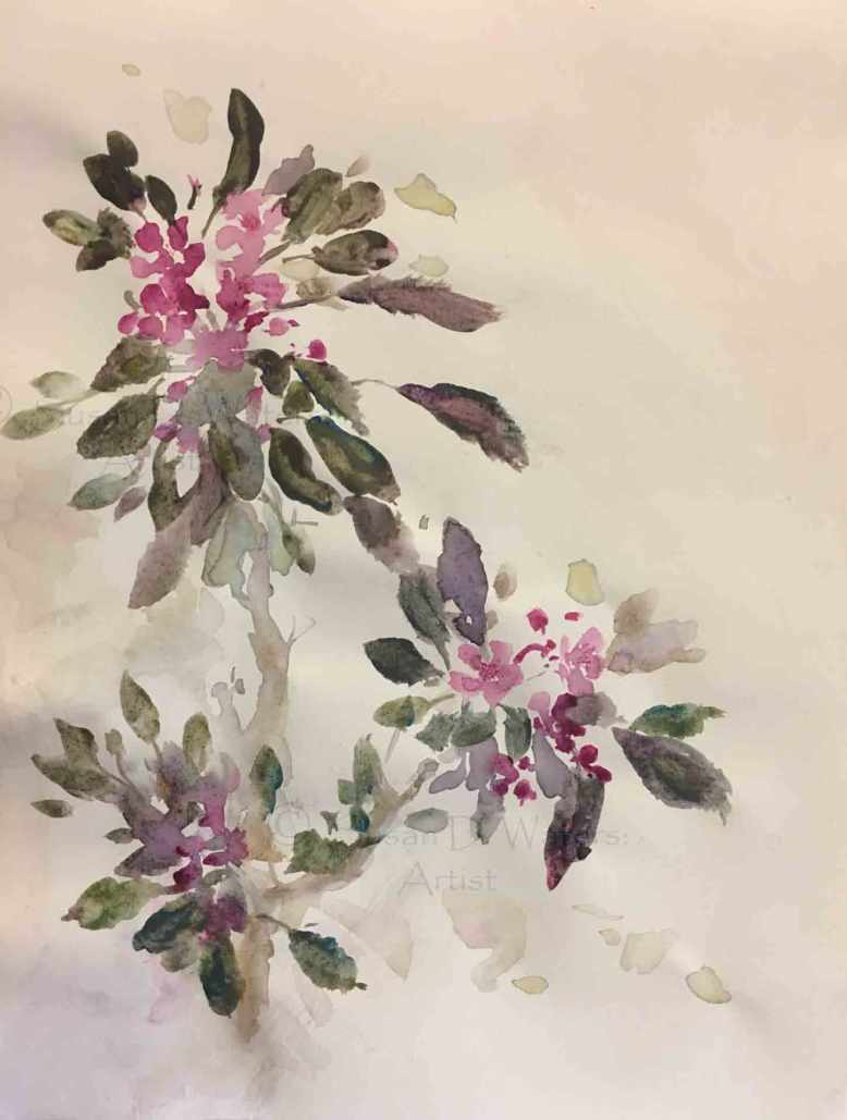 Crabapple-Blossoms,-Susan-Duke-Waters
