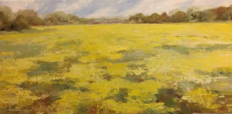 Train-and-Buttercups,-Susan-Duke-Waters