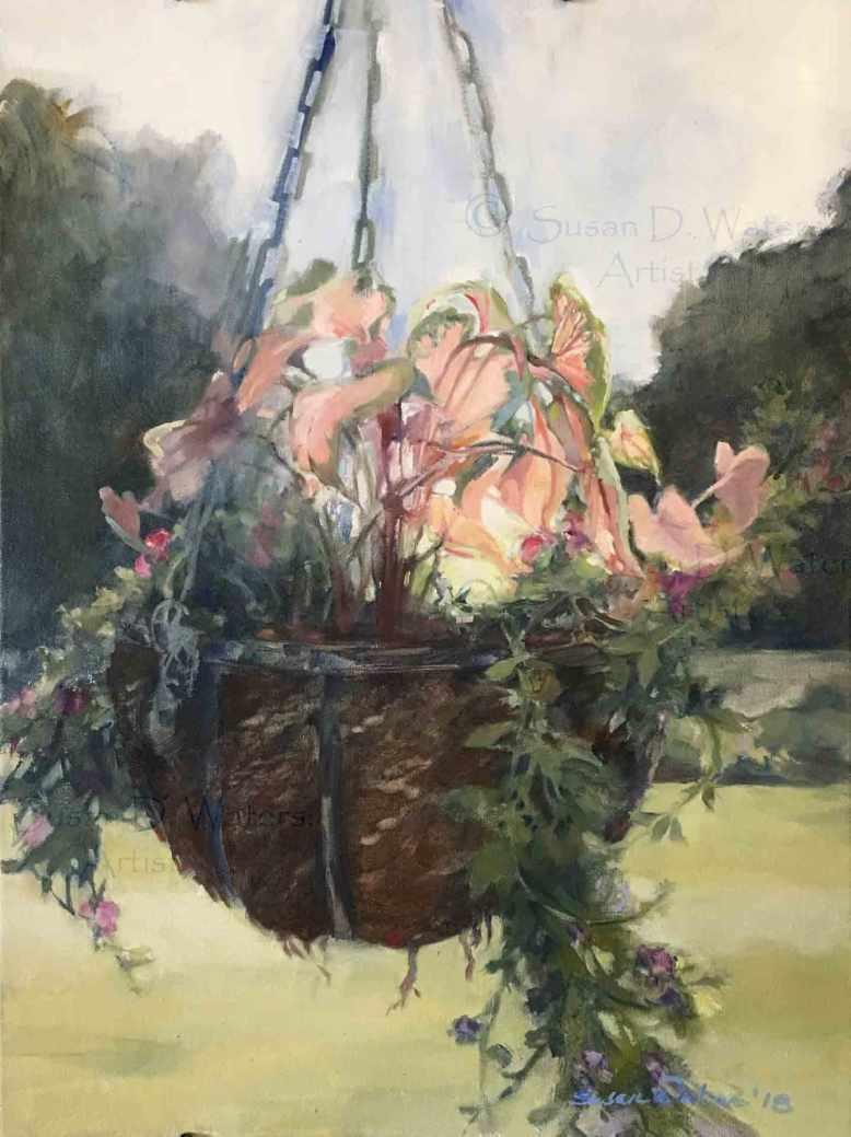 Hanging-Basket,-Susan-Duke-Waters