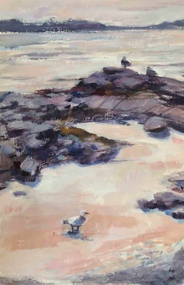 Gulls-on--the-Rocks,-Susan-Duke-Waters