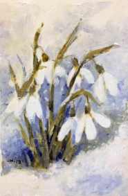 snowdrops-in-snow-i,-susan-duke-waters