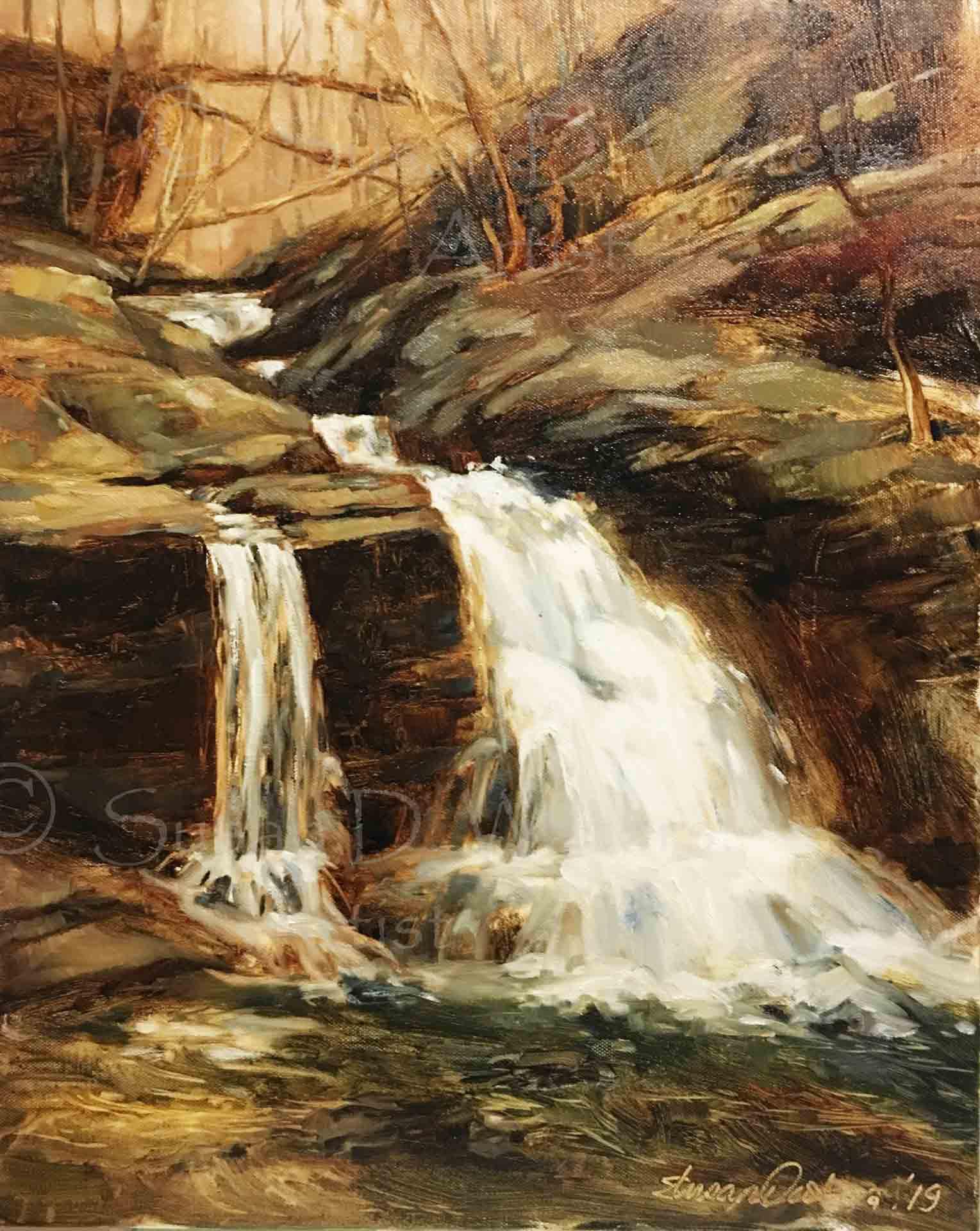 Sinpson Falls, Susan Duke Waters
