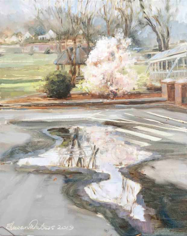 Park-Puddle,-Susan-Duke-Waters