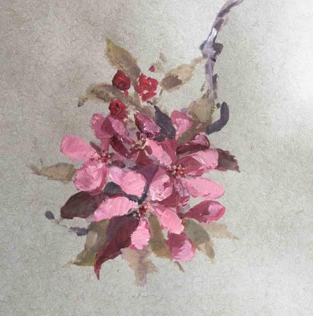 Crabapple-Blossom-Study,-Susan-Duke-Waters