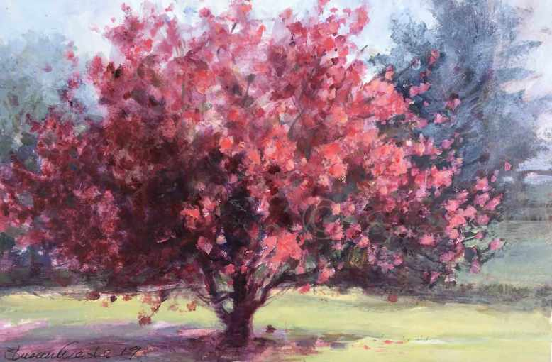 Crabapple-in-Bloom,-Susan-Duke-Waters