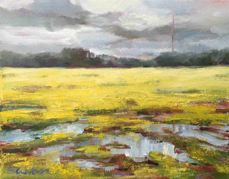 Mud-and-Buttercups,-Susan-Duke-Waters