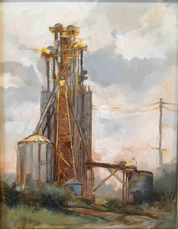 Towers-Over-Eatonton,-Susan-Duke-Waters