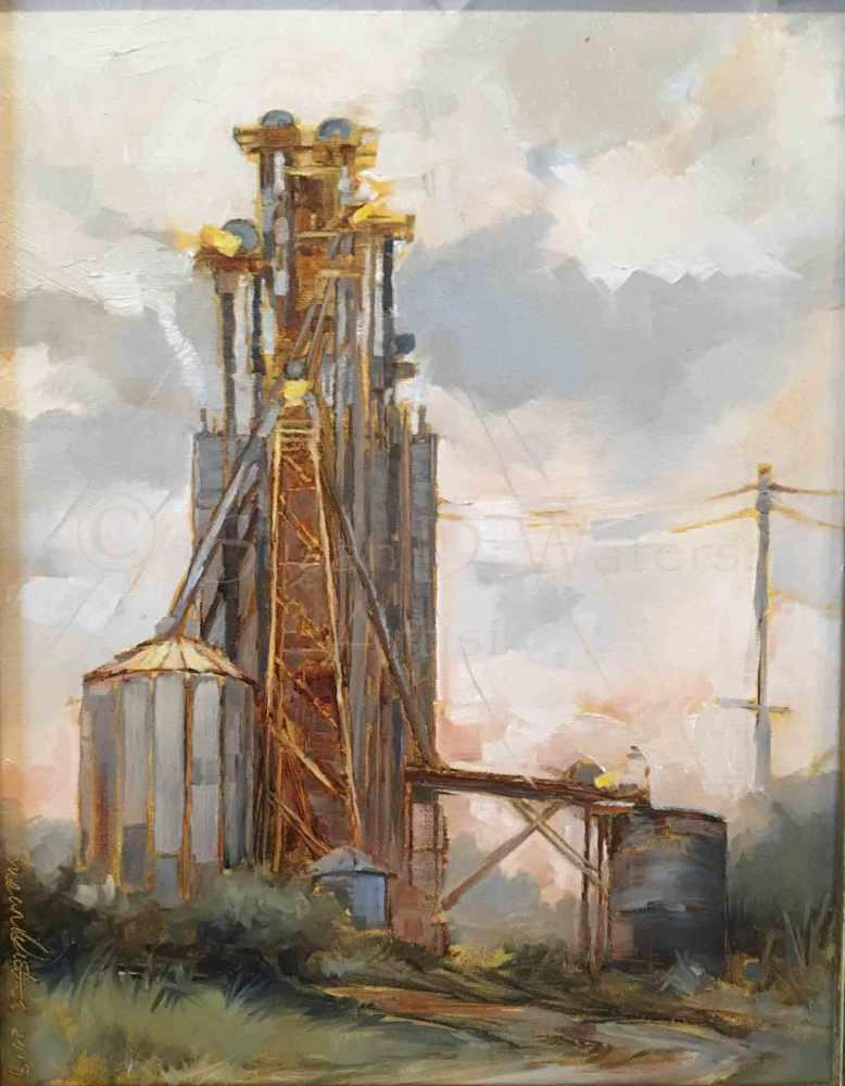 Towers-Over-Eatonton,-Susan-Duke-Waters