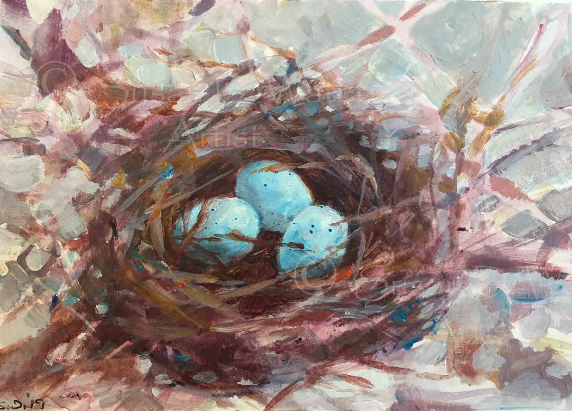 Robin's-Nest,-Susan-Duke-Waters