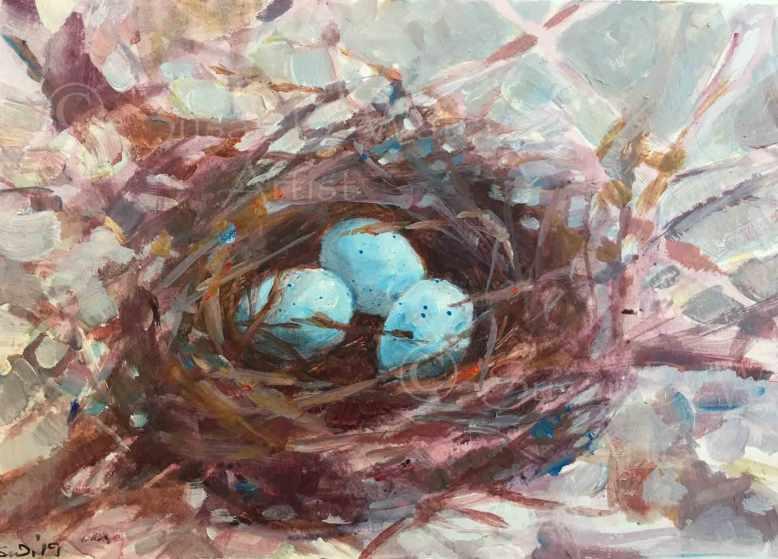 Robin's-Nest,-Susan-Duke-Waters