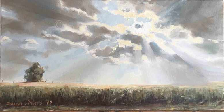 Corn-and-Sunrays,-Susan-Duke-Waters