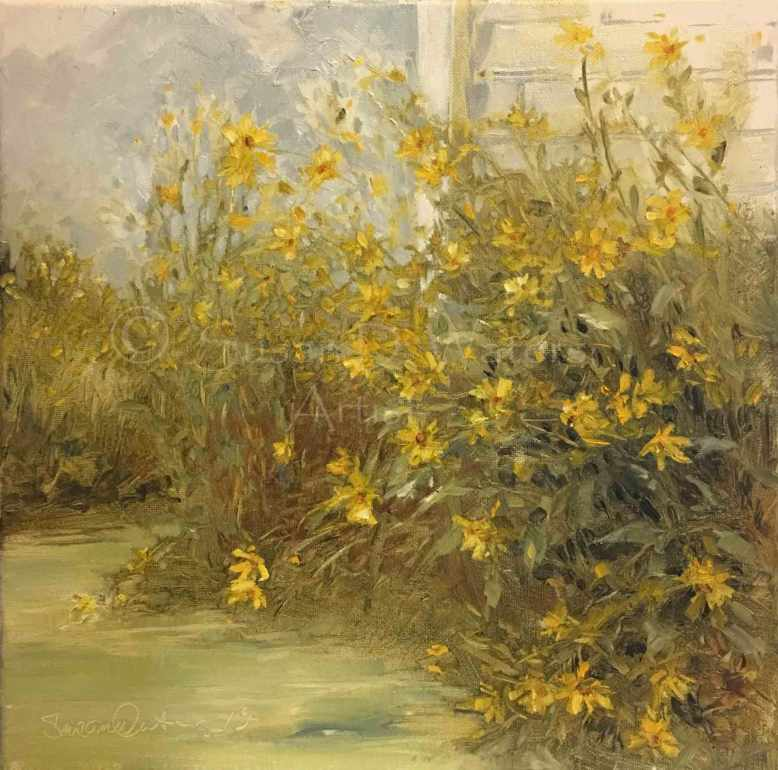 Helianthus-Maximiliani,-Susan-Duke-Waters