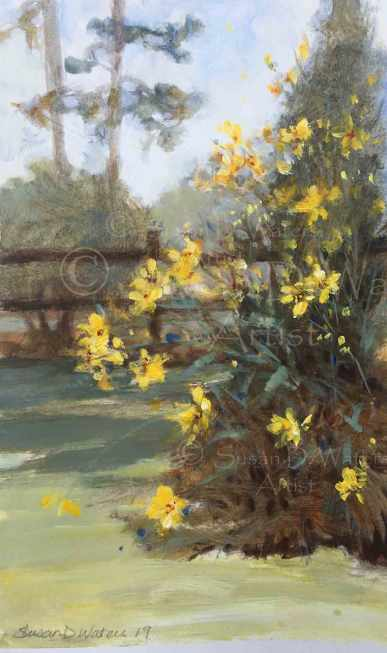 Maximiliani-and-Morning-Glories,-card-2,-Susan-Duke-Waters