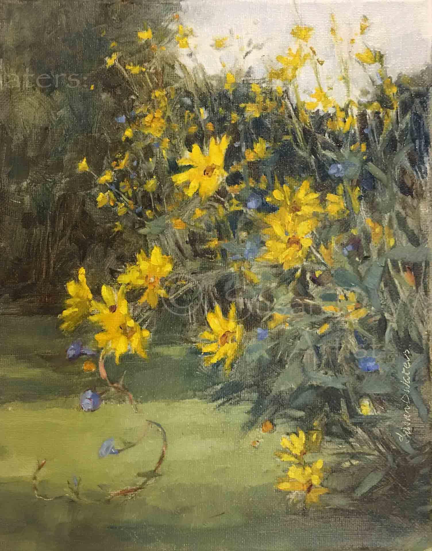 Maximiliani-and-Morning-Glories,-Susan-Duke-Waters
