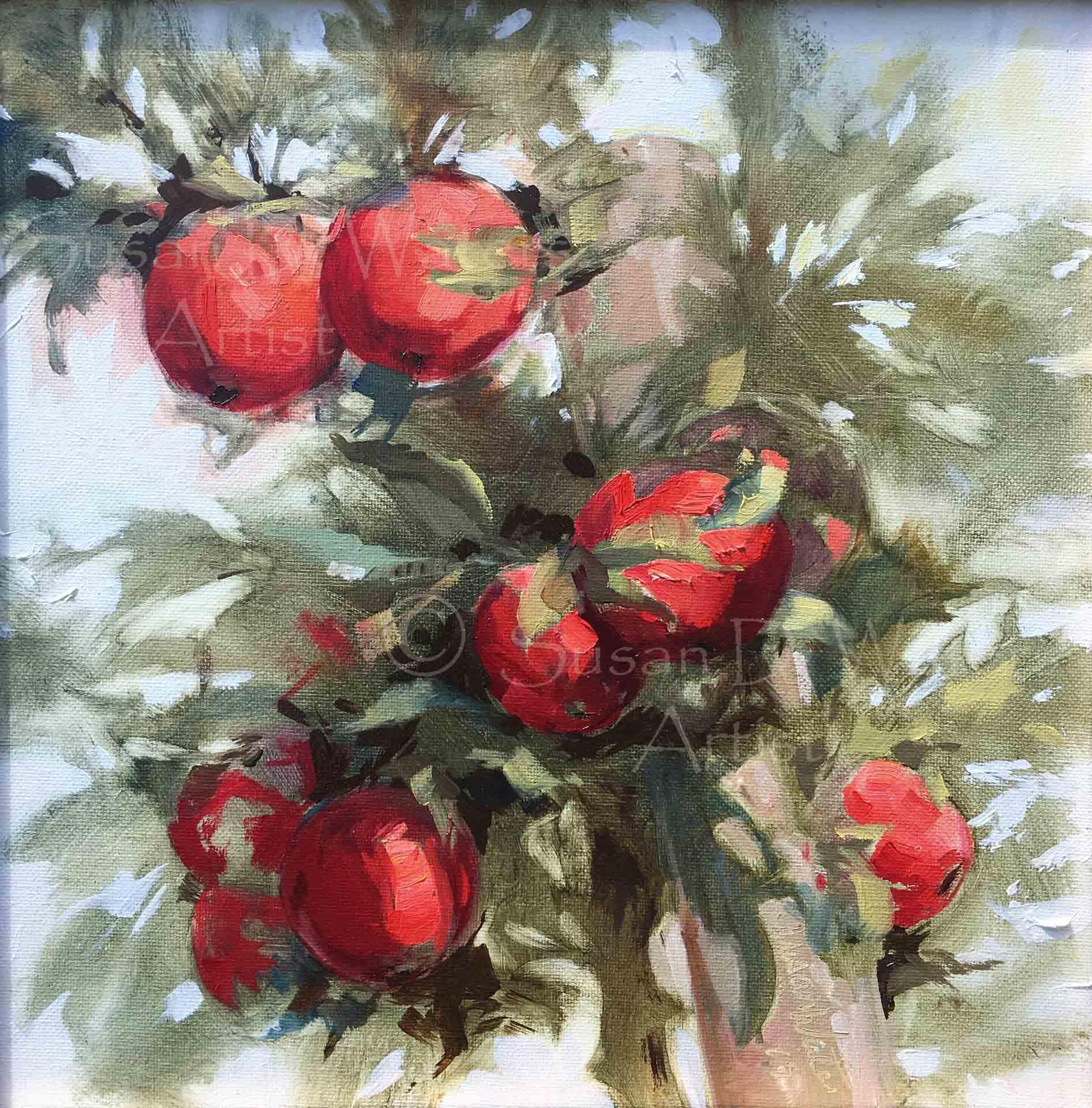 Mercier's-Rubies,-Susan-Duke-Waters