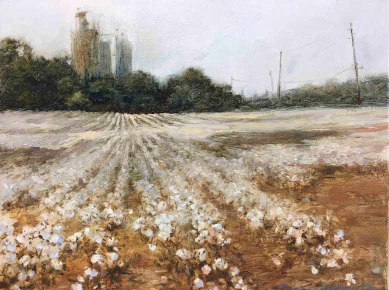 Cotton-Field-GA-Hwy-101,-Susan-Duke-Waters