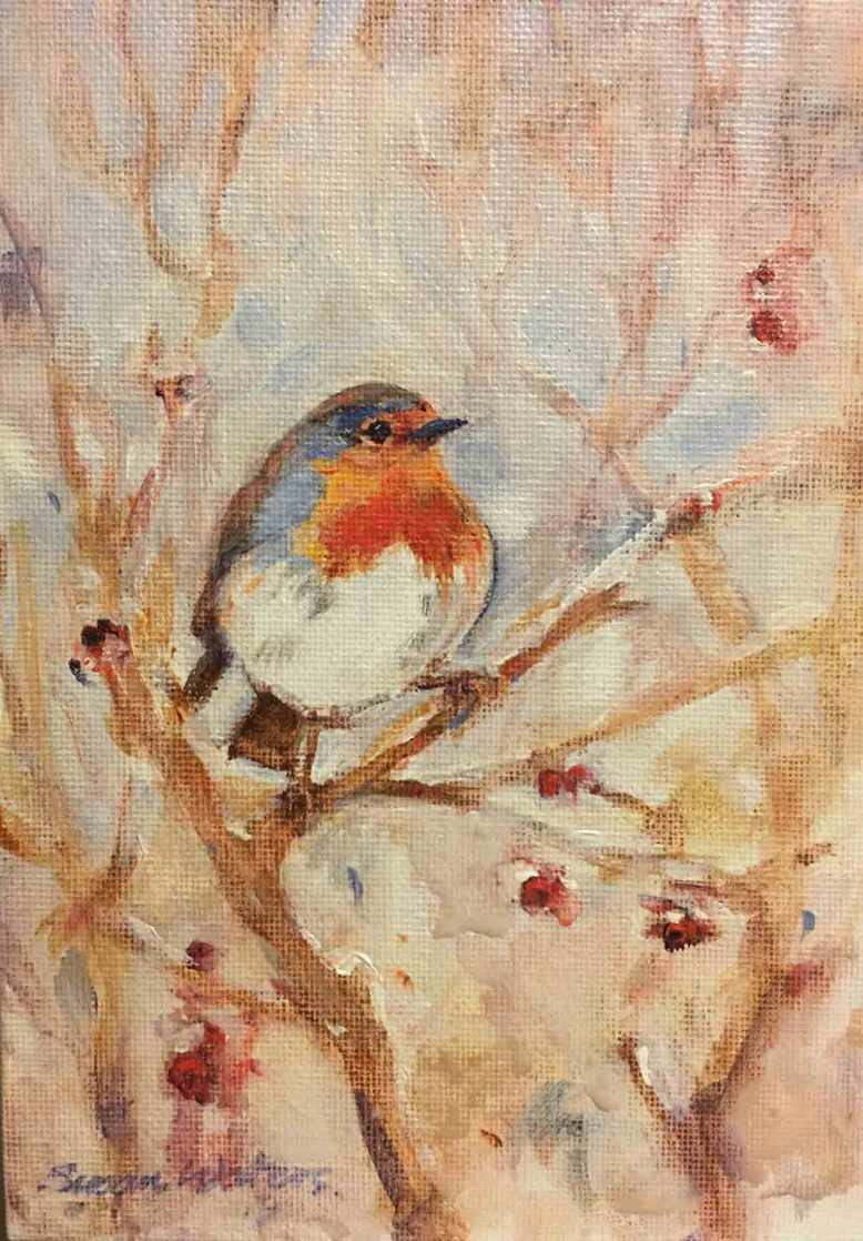 European-Robin,-Susan-Duke-Waters