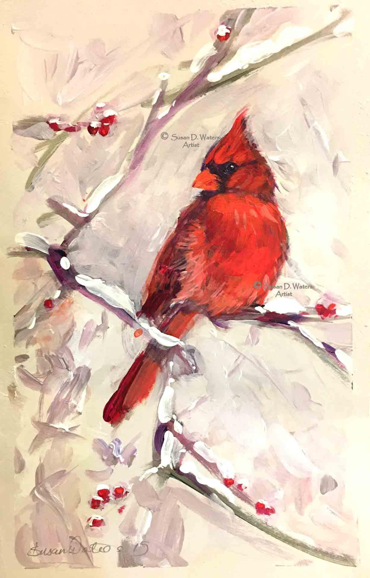Male-Cardinal,-Susan-Duke-Waters