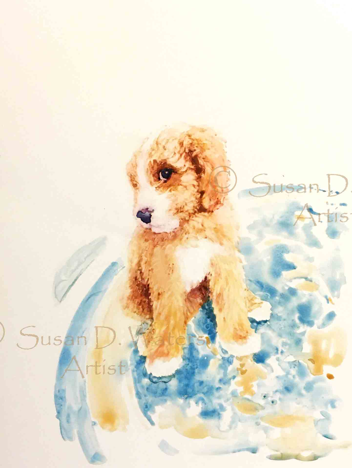 GodenDoodle,-Susan-Duke-Waters