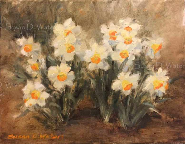 Daffodils-V-Susan-Duke-Waters