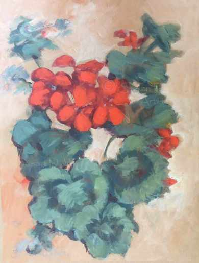 Geranium-I,-Susan-Duke-Waters