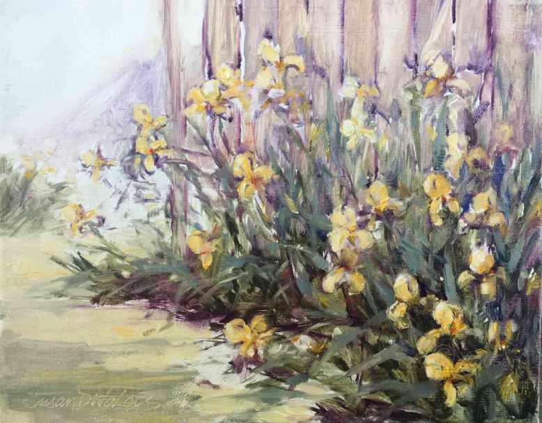 Yellow-Iris,-Susan-Duke-Waters