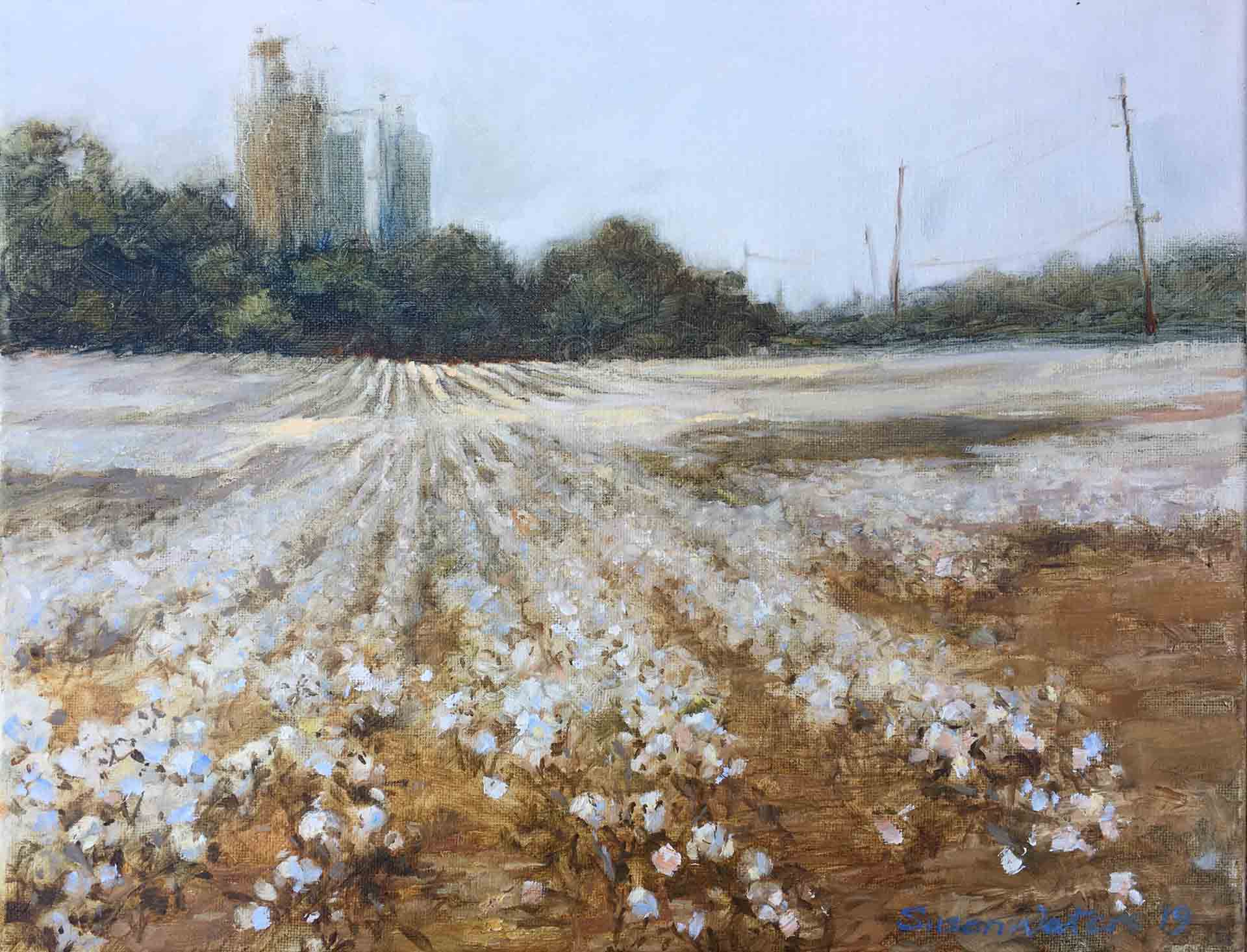 Cotton-Field-GA-Hwy-101,-a,Susan-Duke-Waters