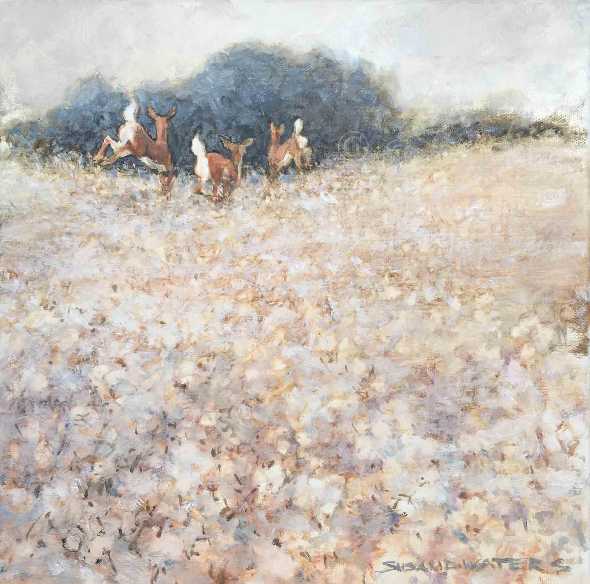Cotton-Tales,-Susan-Duke-Waters
