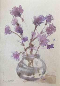 Verbena-bonariensis-II,-Susan-Duke-Waters